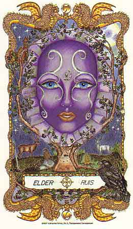 The Faces of WomanSpirit A Celtic Oracle of Avalon by Katherine Torress PHD