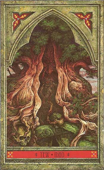 The Green Man Tree Oracle